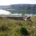Pace Bend Gallery